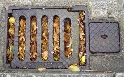 Blocked Drains Service at Port Plumbing
